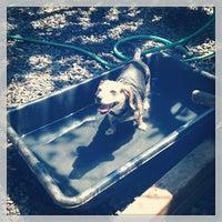Photo taken at Orianna Hill Dog Park by Jamey B. on 7/20/2013
