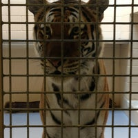 Photo taken at Milwaukee County Zoo by Rachael G. on 7/11/2013
