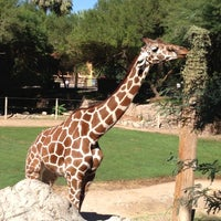 Photo taken at Reid Park Zoo by Gary M. on 10/30/2012