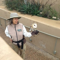 Photo taken at Arizona-Sonora Desert Museum by Gary M. on 2/11/2013