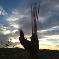 Photo taken at Saguaro National Park by Gary M. on 10/17/2012