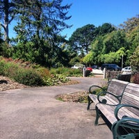Photo taken at John McLaren Memorial Rhododendron Dell by JB D. on 9/5/2013