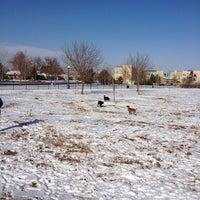 Foto scattata a Stapleton Dog Park da Casey il 12/25/2012
