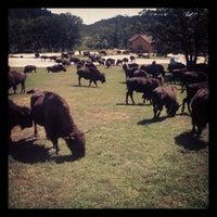 Photo taken at Creekside Lodge by Joe R. on 8/29/2013