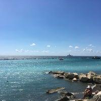 Снимок сделан в Venus Beach пользователем Anna T. 9/22/2016