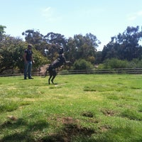 Photo taken at Balboa Park Dog Park by Shalara K. on 7/23/2013