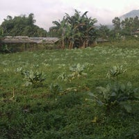 Photo taken at Sentra Penjualan Tanaman Hias Kakaskasen by Toar M. on 12/27/2012