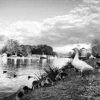 Photo taken at Caversham by Jimmy F. on 5/15/2013