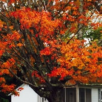 Photo taken at Eden Village Motel and Cottages Bar Harbor by Linda H. on 10/16/2015