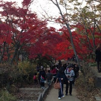 Photo taken at Top of Mt. Takao by AIRDSK1 on 11/24/2012