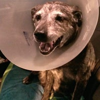 Photo taken at Cobb Emergency Veterinary Clinic by Dude S. on 8/4/2013