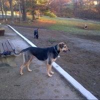 Photo taken at Ridgefield Bark Park by Debralee H. on 11/23/2012