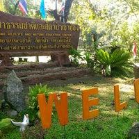 Photo taken at สวนพฤกษศาสตร์ภาคใต้(เขาช่อง) by Kritsanucha® W. on 10/28/2014