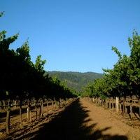 Photo taken at Amista Vineyards by Amista Vineyards on 9/25/2015