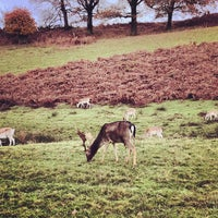 Photo taken at Knole Park by James B. on 11/17/2012