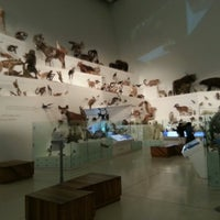 Photo taken at Melbourne Museum by Scott M. on 12/31/2012