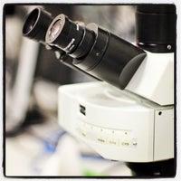 Photo taken at SEMM European School of Molecular Medicine by Roberto A. on 9/4/2012