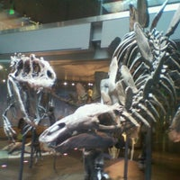 Photo taken at Dinosaur Hall by Brotha R. on 7/5/2012