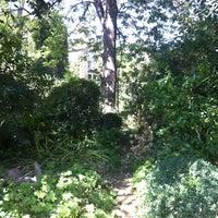 Photo taken at Harleyford Road Community Garden by Sarah O. on 8/18/2012