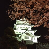 Photo taken at 千葉城 by Takeo K. on 4/8/2012
