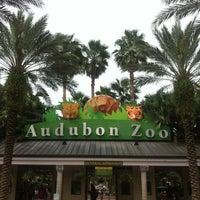 Photo taken at Audubon Zoo by Vanessa W. on 7/22/2012