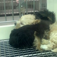 Photo taken at Petland by Mark W. on 5/15/2012