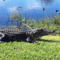 Photo taken at Everglades Safari Park by Ozlem O. on 2/11/2012