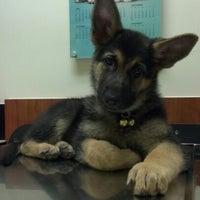 Photo taken at Banfield Pet Hospital by Corwin C. on 7/23/2012