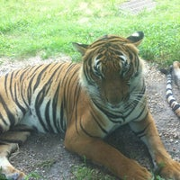 Photo taken at Virginia Zoo by Chloe E. on 8/10/2012