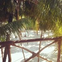 Снимок сделан в Rosa del Viento пользователем Ekaterina S. 9/3/2012