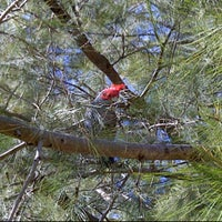 Photo taken at Gungahlin Lakes Golf Club by Richard B. on 10/17/2011