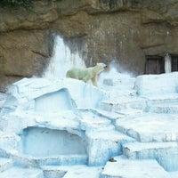 Photo taken at Tennoji Zoo by Yoshiaki M. on 9/24/2011