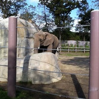 Photo taken at Roger Williams Park Zoo by Spencer D. on 10/2/2011