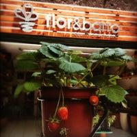 Foto tomada en Flor y Barro por Flor y B. el 4/20/2012