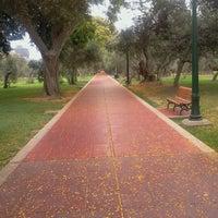 Foto tomada en Bosque El Olivar por Alexander V. el 12/31/2011