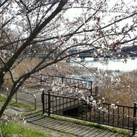 Photo taken at 桝池親水公園 by Motohiko K. on 4/7/2012