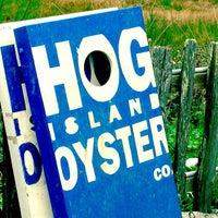 Foto tirada no(a) Hog Island Oyster Farm por Lane B. em 11/5/2011
