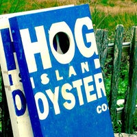 Photo taken at Hog Island Oyster Farm by Lane B. on 11/5/2011
