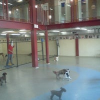 Photo taken at Urban Paws by Katrina T. on 9/27/2011