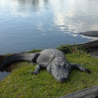 Photo taken at Gatorland by Nadira M. on 2/23/2012