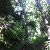 Photo taken at Franklin Canyon Park by Daniel R. on 4/12/2012