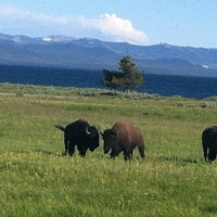 Photo taken at Yellowstone National Park by Heather L. on 7/28/2011