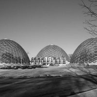 Photo taken at Mitchell Park Horticultural Conservatory (The Domes) by K. K. on 1/29/2012