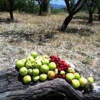 Photo taken at Benimaurell by Nadia C. on 6/16/2012