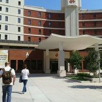 8/15/2011 tarihinde Umut E.ziyaretçi tarafından İzmir Ekonomi Üniversitesi'de çekilen fotoğraf