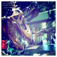 Photo taken at Dinosaur Hall by Mitzi Y. on 7/24/2011