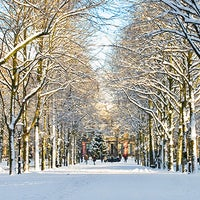 Photo taken at Lange Voorhout by Maurice on 3/17/2012