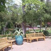 Mercer Arboretum Botanic Gardens Garden In Humble