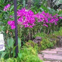 Das Foto wurde bei National Orchid Garden von Feng Z. am 2/19/2012 aufgenommen