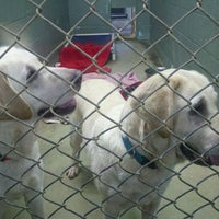 Photo taken at Greenhill Humane Society by Kim K. on 2/20/2012
